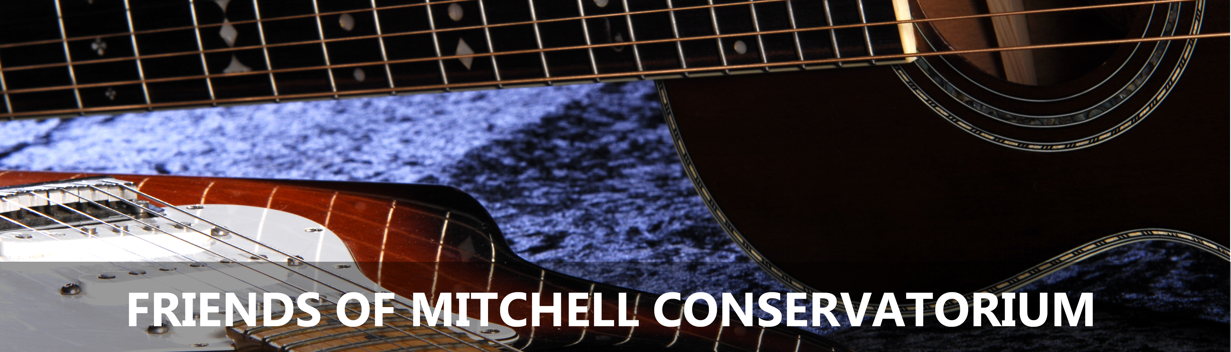 Friends of Mitchell Conservatorium